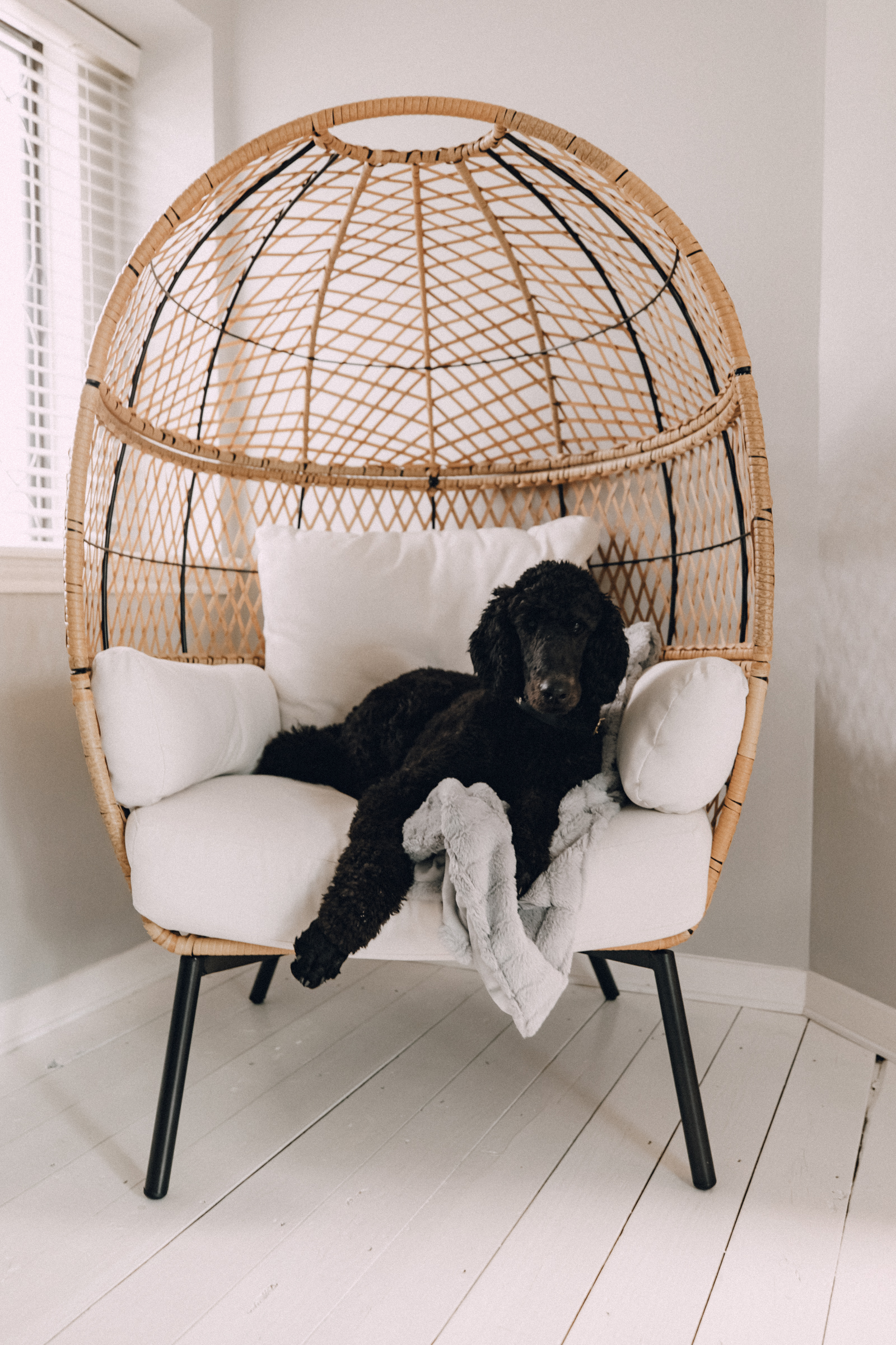 cozy and cute egg chair from Walmart
