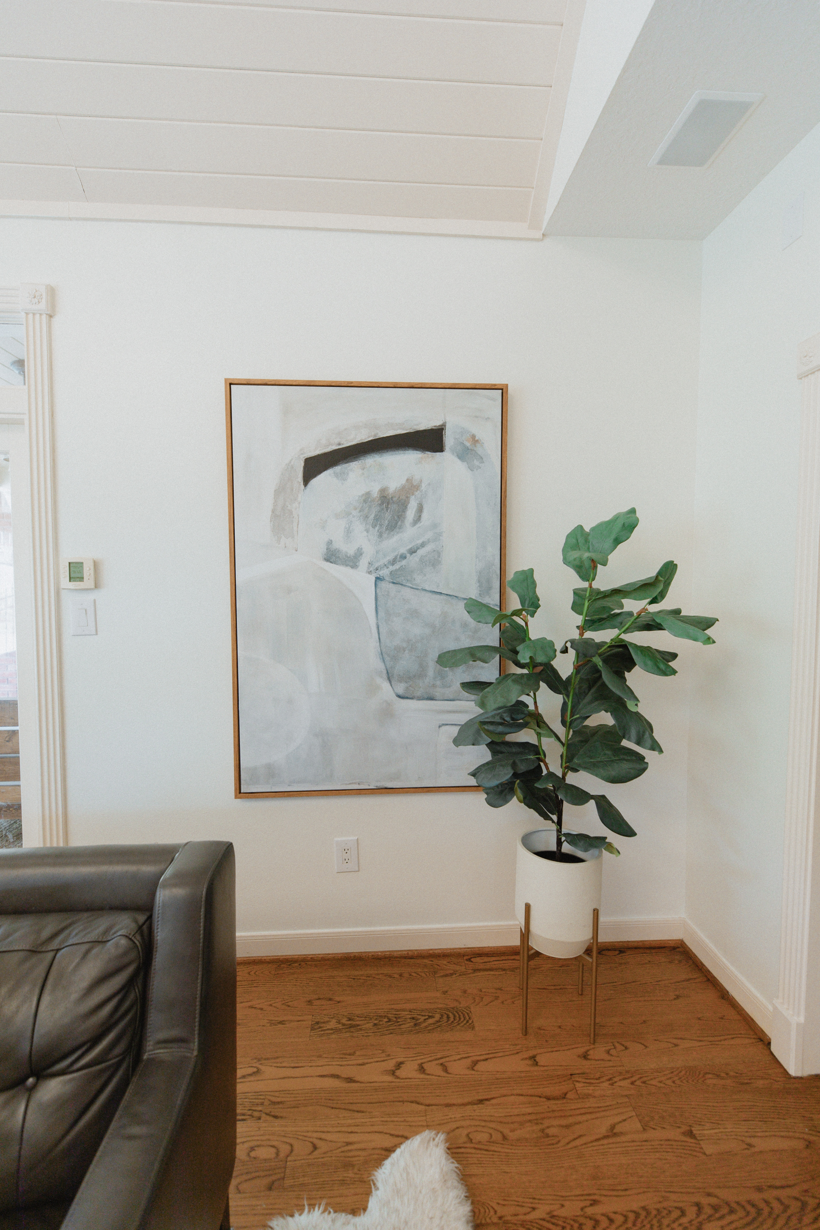potted plant and hanging abstract picture